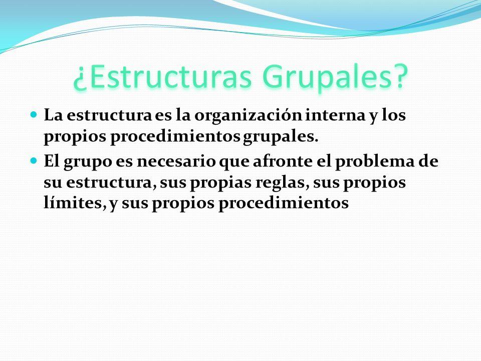 La estructura es la organización interna y los propios procedimientos grupales. El grupo es necesario que afronte el problema de su estructura, sus pr