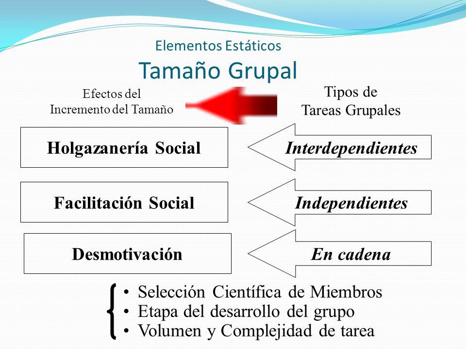 Elementos Estáticos Tamaño Grupal Efectos del Incremento del Tamaño Tipos de Tareas Grupales Holgazanería Social Facilitación Social Desmotivación Int