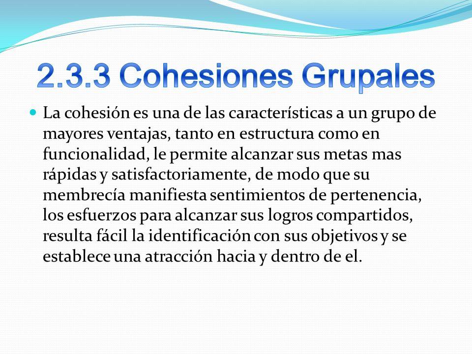 La cohesión es una de las características a un grupo de mayores ventajas, tanto en estructura como en funcionalidad, le permite alcanzar sus metas mas