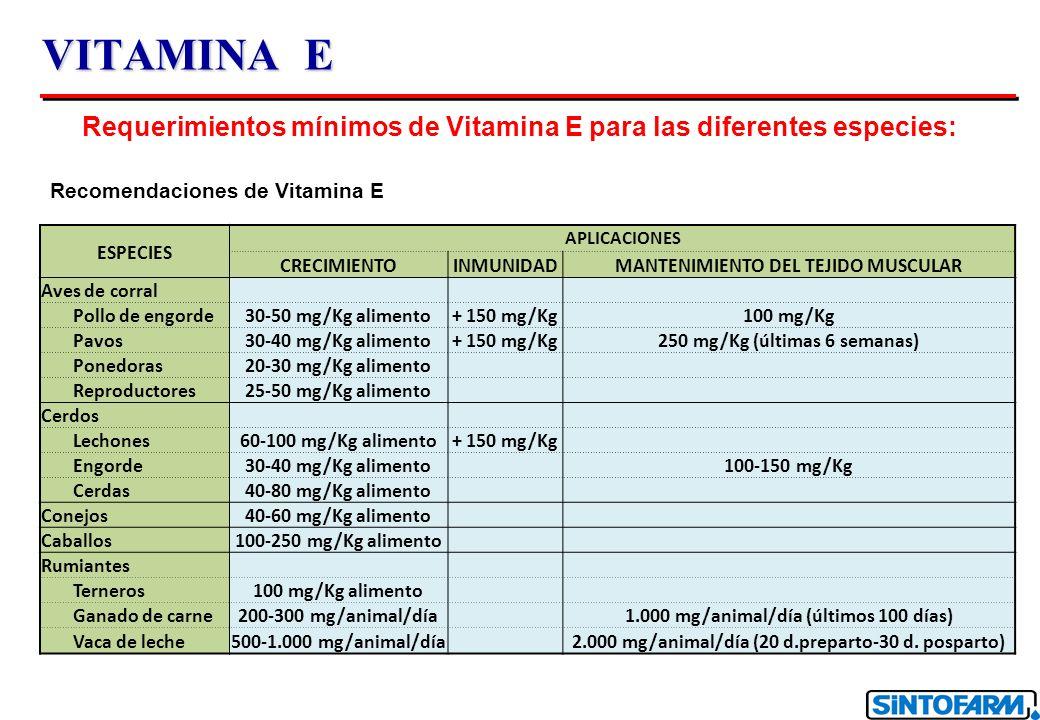 VITAMINA E Requerimientos mínimos de Vitamina E para las diferentes especies: Recomendaciones de Vitamina E ESPECIES APLICACIONES CRECIMIENTOINMUNIDADMANTENIMIENTO DEL TEJIDO MUSCULAR Aves de corral Pollo de engorde30-50 mg/Kg alimento+ 150 mg/Kg100 mg/Kg Pavos30-40 mg/Kg alimento+ 150 mg/Kg250 mg/Kg (últimas 6 semanas) Ponedoras20-30 mg/Kg alimento Reproductores25-50 mg/Kg alimento Cerdos Lechones60-100 mg/Kg alimento+ 150 mg/Kg Engorde30-40 mg/Kg alimento 100-150 mg/Kg Cerdas40-80 mg/Kg alimento Conejos40-60 mg/Kg alimento Caballos100-250 mg/Kg alimento Rumiantes Terneros100 mg/Kg alimento Ganado de carne200-300 mg/animal/día 1.000 mg/animal/día (últimos 100 días) Vaca de leche500-1.000 mg/animal/día 2.000 mg/animal/día (20 d.preparto-30 d.
