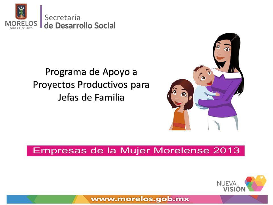 Datos Subsecretaría de Participación Social y Desarrollo Comunitario Dirección General de Economía a Social y Solidaria Noviembre, 2013DUT Programa de