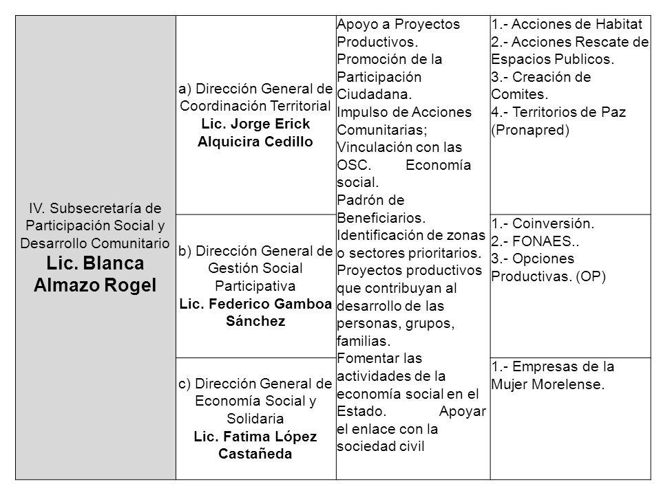 IV. Subsecretaría de Participación Social y Desarrollo Comunitario Lic. Blanca Almazo Rogel a) Dirección General de Coordinación Territorial Lic. Jorg