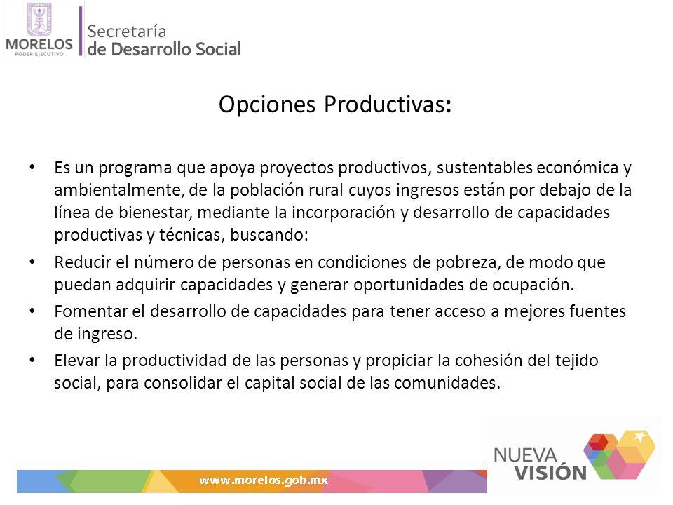 Opciones Productivas: Es un programa que apoya proyectos productivos, sustentables económica y ambientalmente, de la población rural cuyos ingresos es