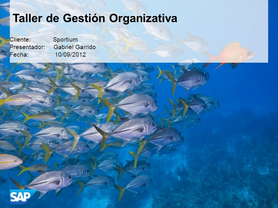 Taller de Gestión Organizativa Cliente: Sportium Presentador: Gabriel Garrido Fecha: 10/09/2012