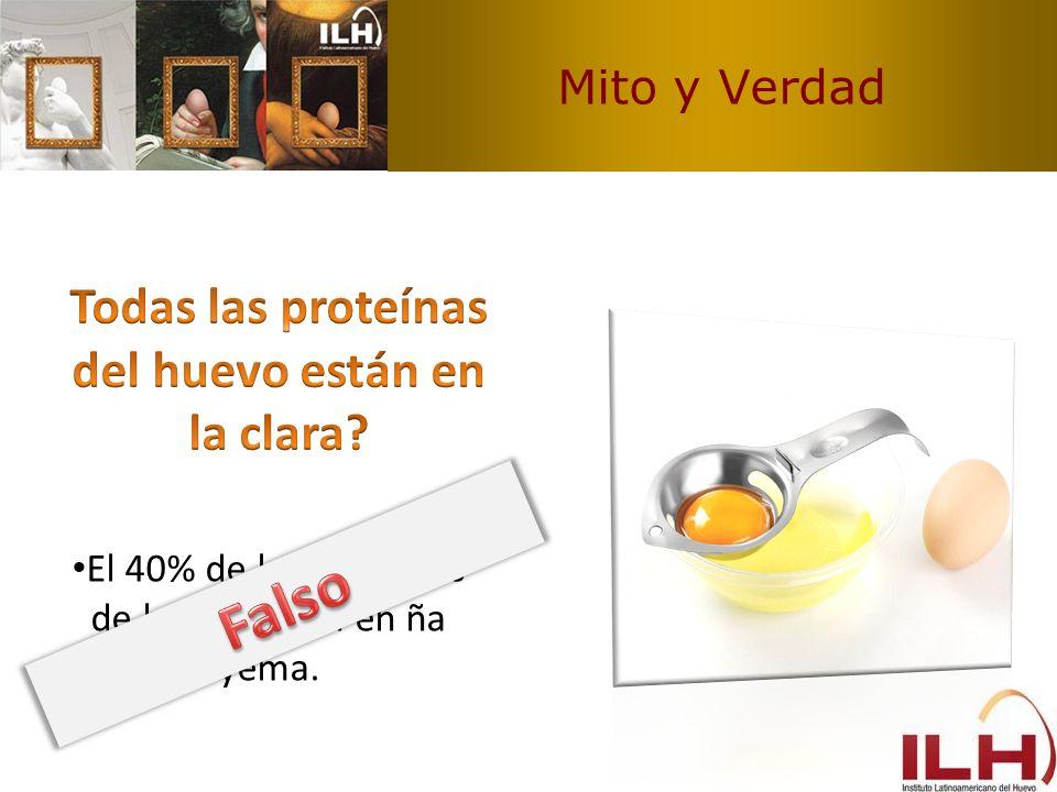 Mito y Verdad El 40% de las proteínas de huevo están en ña yema.