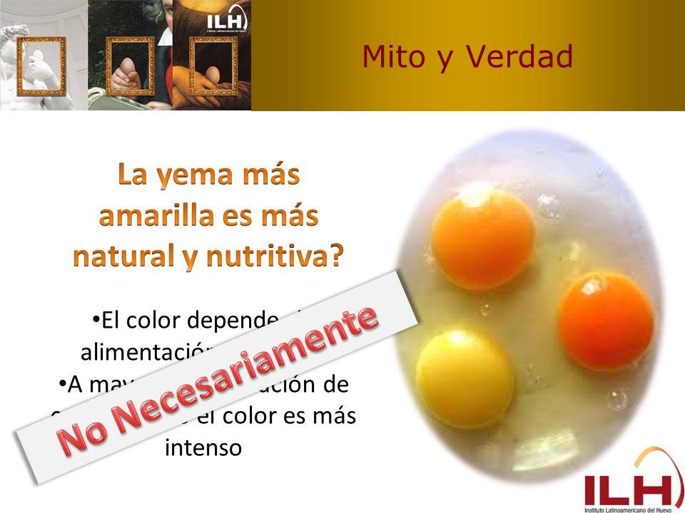 Mito y Verdad El color depende de alimentación de gallina A mayor concentración de carotenoides el color es más intenso