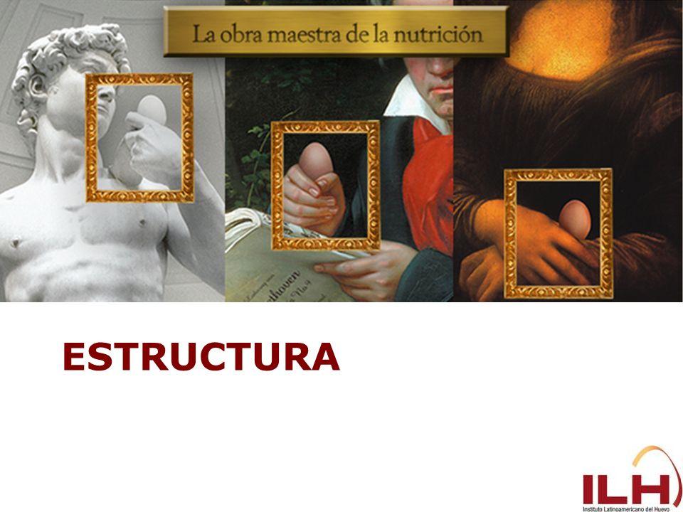 Estructura 30,9% 11,5% 57,3%