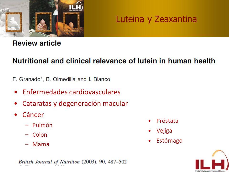 Luteina y Zeaxantina Enfermedades cardiovasculares Cataratas y degeneración macular Cáncer –Pulmón –Colon –Mama Próstata Vejiga Estómago