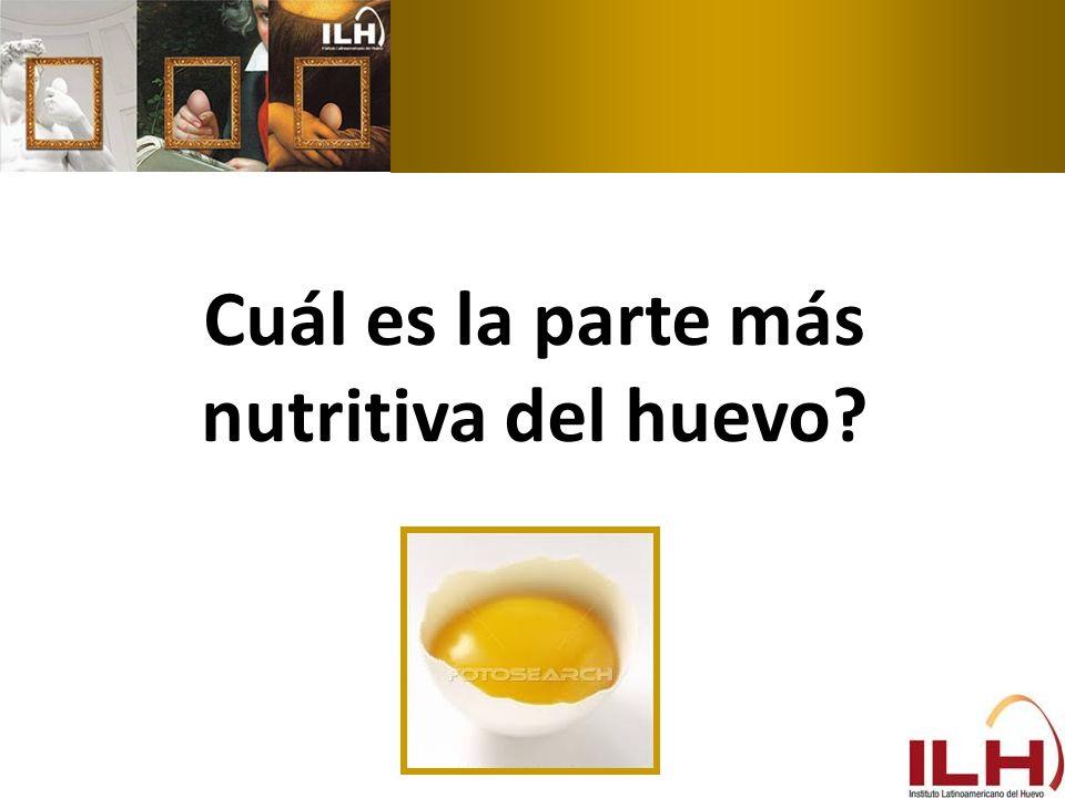 Cuál es la parte más nutritiva del huevo?