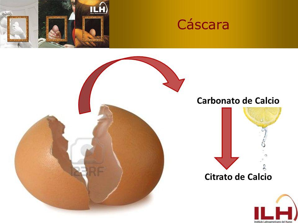 Luteina y Zeaxantina Triple de biodisponibilidad de luteina y zeaxantina del huevo vs otros alimentos Fuente: Nutr.