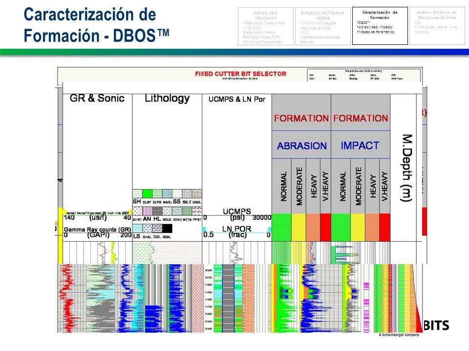 Caracterización de Formación - DBOS Análisis de la Información Parámetros Operacionales (WOB, RPM) Desempeño (Metros Perforados, Horas, ROP) Problemas Operacionales Evaluación de Trépanos Usados Condición de Desgaste Estructura de Corte IADC Características adicionales (features) Caracterización de Formación DBOS Abrasividad, Impacto Mapeo de Parámetros Análisis Dinámico de Estructuras de Corte IAR Vibraciones: Lateral, Axial, Torsional