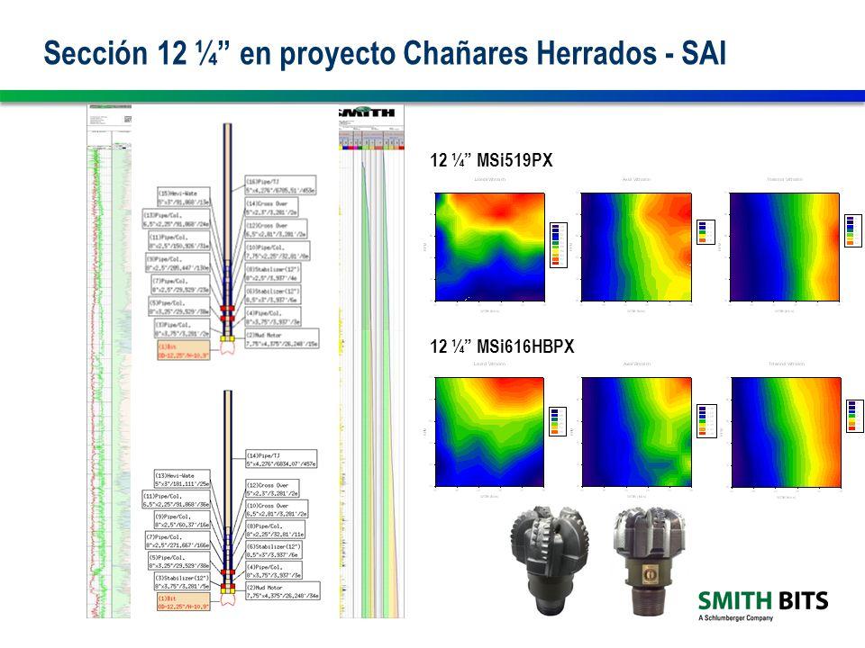 Sección 12 ¼ en proyecto Chañares Herrados - SAI 12 ¼ MSi519PX 12 ¼ MSi616HBPX