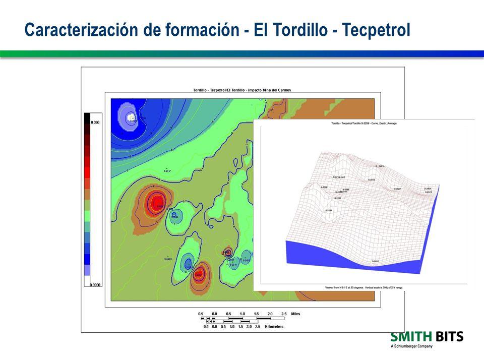 Caracterización de formación - El Tordillo - Tecpetrol