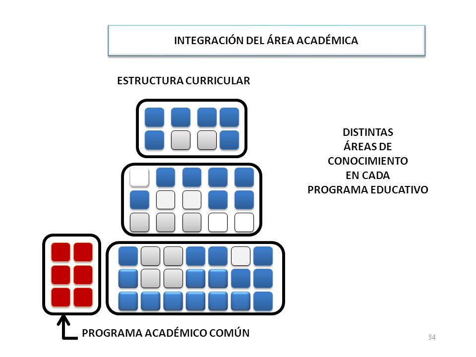 34 ESTRUCTURA CURRICULAR INTEGRACIÓN DEL ÁREA ACADÉMICA CONFLUENCIA EN ESTANCIAS PROFESIONALES Y SERVICIO SOCIAL FORMACIÓN PROFESIONAL ESPECÍFICA PROGRAMA ACADÉMICO COMÚN TRONCO COMÚN Y TRONCO ESPECIFICANTE