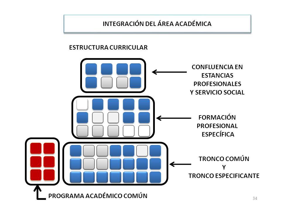 34 ESTRUCTURA CURRICULAR INTEGRACIÓN DEL ÁREA ACADÉMICA CONFLUENCIA EN ESTANCIAS PROFESIONALES Y SERVICIO SOCIAL FORMACIÓN PROFESIONAL ESPECÍFICA PROG