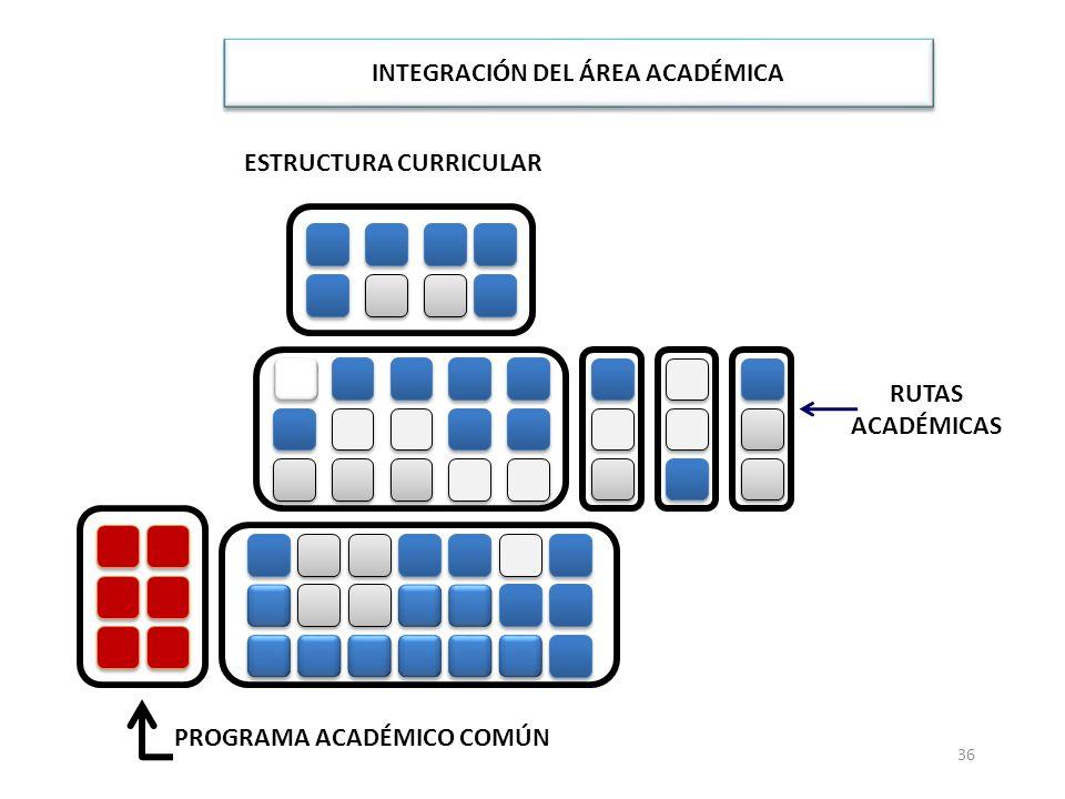 ESTRUCTURA CURRICULAR INTEGRACIÓN DEL ÁREA ACADÉMICA RUTAS ACADÉMICAS 36 PROGRAMA ACADÉMICO COMÚN