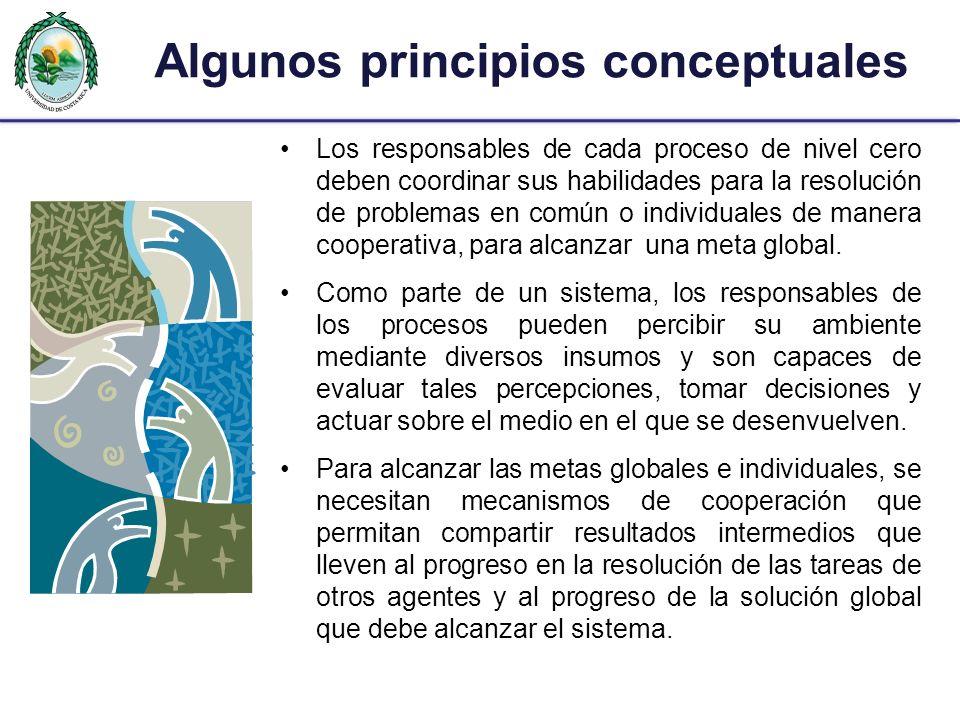 Algunos principios conceptuales Los responsables de cada proceso de nivel cero deben coordinar sus habilidades para la resolución de problemas en comú