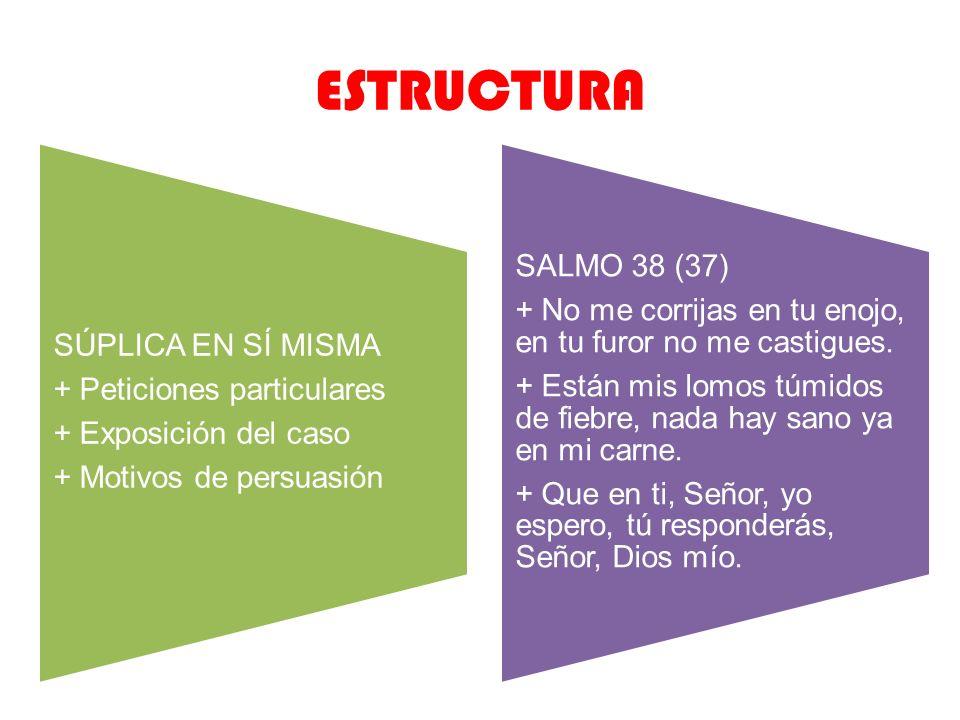 ESTRUCTURA SÚPLICA EN SÍ MISMA + Peticiones particulares + Exposición del caso + Motivos de persuasión SALMO 38 (37) + No me corrijas en tu enojo, en