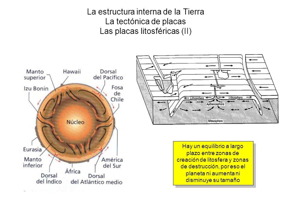 La estructura interna de la Tierra La tectónica de placas Las placas litosféricas (II) Hay un equilibrio a largo plazo entre zonas de creación de lito