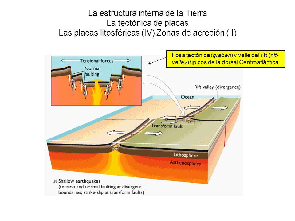 La estructura interna de la Tierra La tectónica de placas Las placas litosféricas (IV) Zonas de acreción (II) Fosa tectónica (graben) y valle del rift