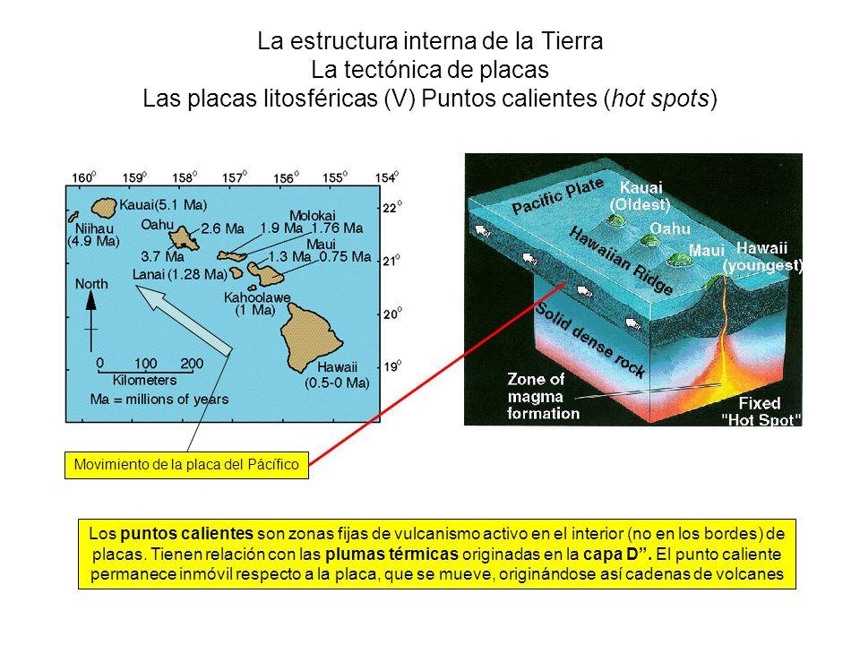 La estructura interna de la Tierra La tectónica de placas Las placas litosféricas (V) Puntos calientes (hot spots) Los puntos calientes son zonas fija