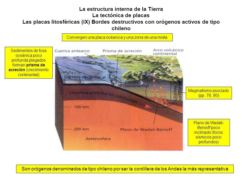 La estructura interna de la Tierra La tectónica de placas Las placas litosféricas (IX) Bordes destructivos con orógenos activos de tipo chileno Son or