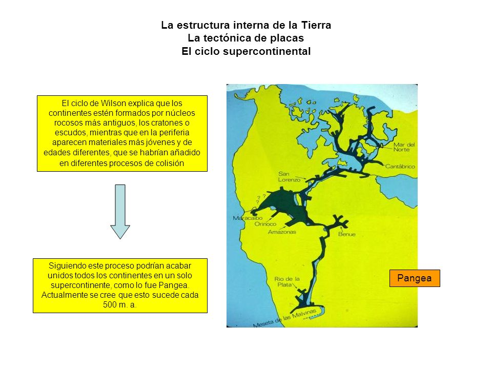 La estructura interna de la Tierra La tectónica de placas El ciclo supercontinental El ciclo de Wilson explica que los continentes estén formados por