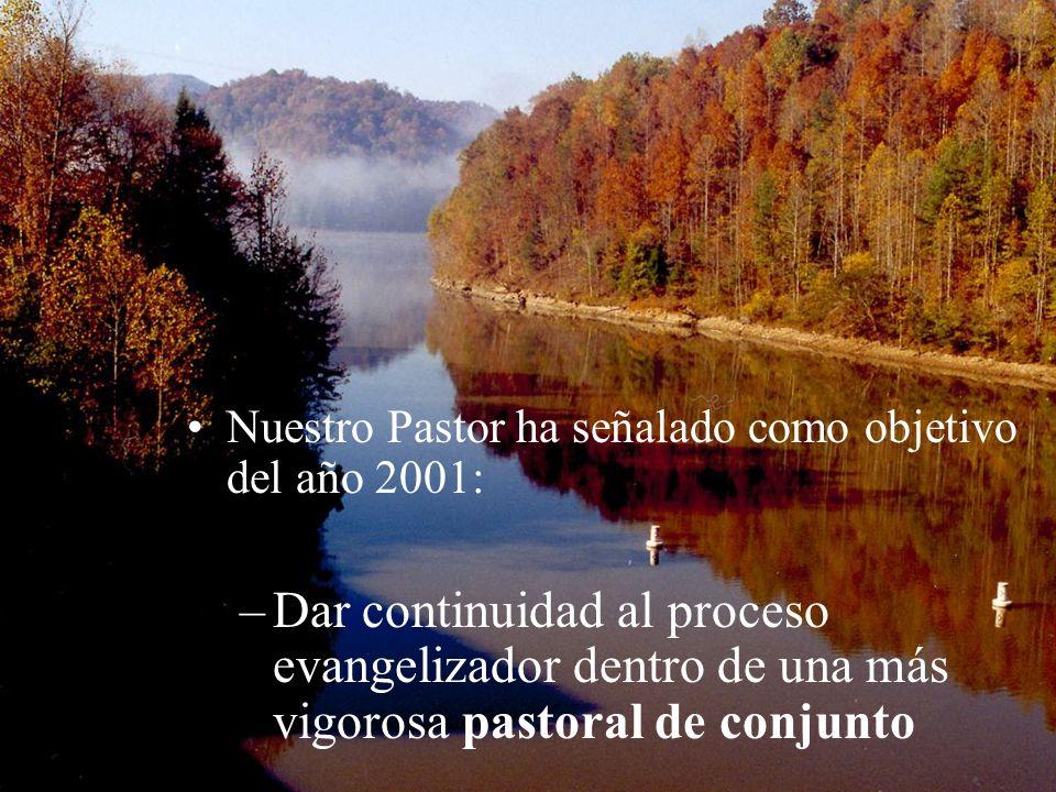 Nuestro Pastor ha señalado como objetivo del año 2001: –Dar continuidad al proceso evangelizador dentro de una más vigorosa pastoral de conjunto
