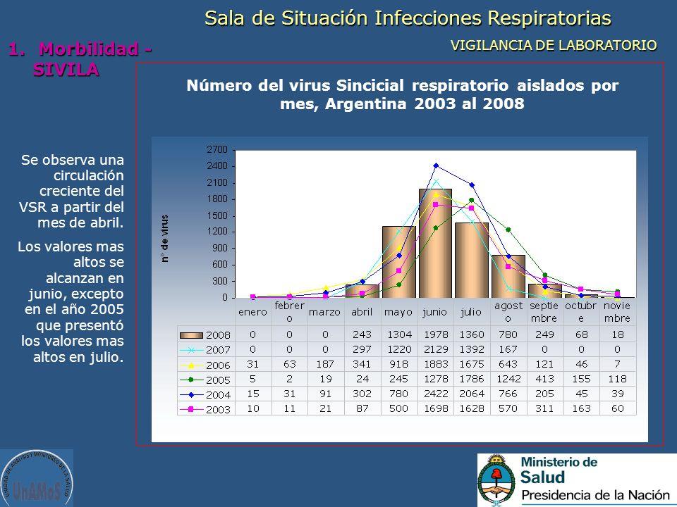 Se observa una circulación creciente del VSR a partir del mes de abril. Los valores mas altos se alcanzan en junio, excepto en el año 2005 que present
