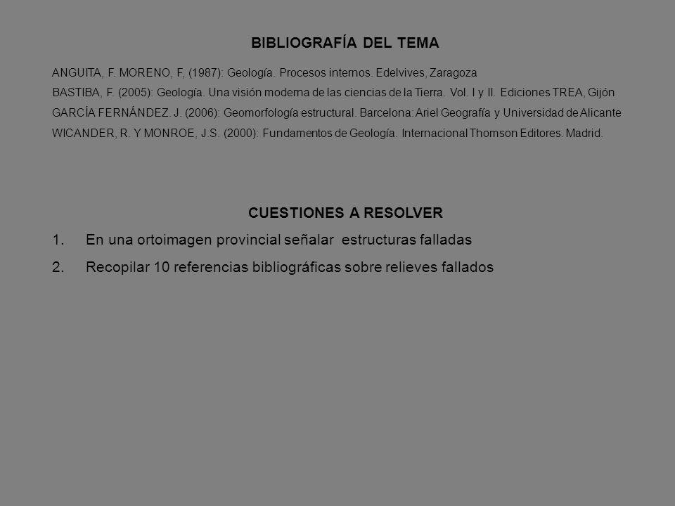 TIPOS DE VALLES SEGÚN SU POSICIÓN RESPECTO A LA ESTRUCTURA EN RELACIÓN AL BUZAMIENTOEN RELACIÓN AL BUZAMIENTO ORTOCLINAL:ORTOCLINAL: SITUADO ENTRE CAP
