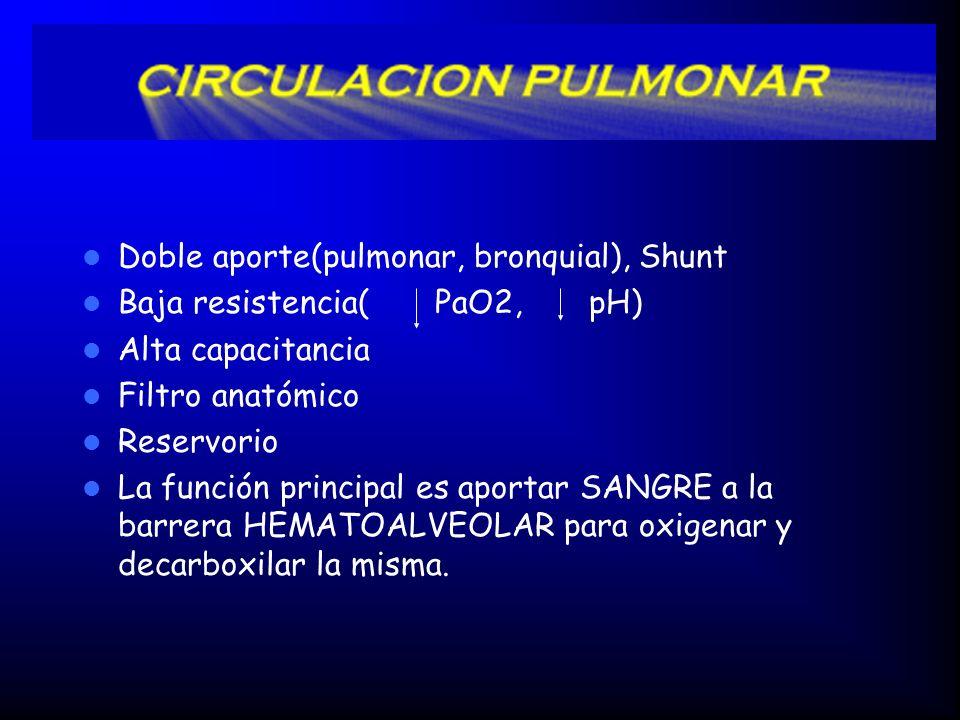 Doble aporte(pulmonar, bronquial), Shunt Baja resistencia( PaO2, pH) Alta capacitancia Filtro anatómico Reservorio La función principal es aportar SANGRE a la barrera HEMATOALVEOLAR para oxigenar y decarboxilar la misma.