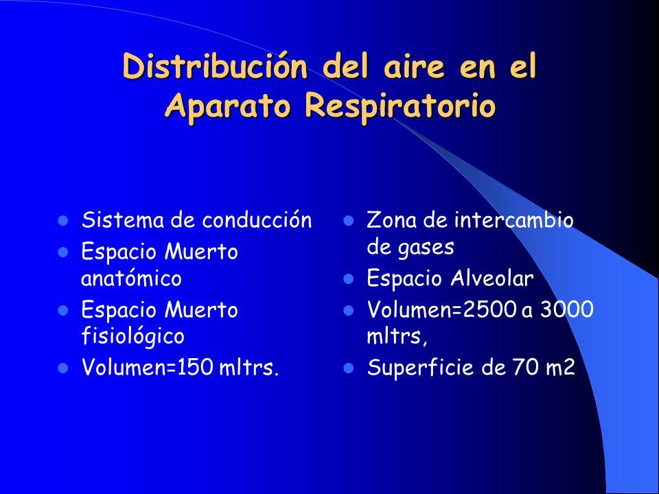 Resumen Conceptual El movimiento intermitente de aire desde la atmósfera hasta el alvéolo y viceversa se llama: VENTILACION La ventilación permite el intercambio de gases a nivel de la barrera hematoalveolar por el mecanismo de DIFUSION SIMPLE La difusión comprende: Oxigenación y Decarboxilación y es un fenómeno PASIVO generado por diferencia de presiones parciales de gases a ambos lados de la membrana hematoalveolar El AIRE es un GAS y por lo tanto cumple con las leyes físicas de los gases