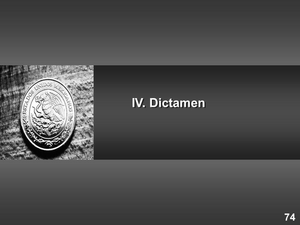 74 IV. Dictamen