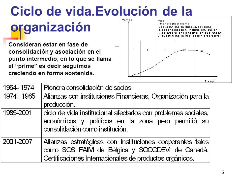 5 Ciclo de vida.Evolución de la organización Consideran estar en fase de consolidación y asociación en el punto intermedio, en lo que se llama el prim