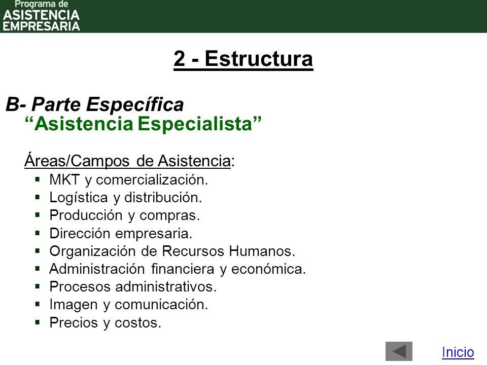 2 - Estructura Áreas/Campos de Asistencia: MKT y comercialización.