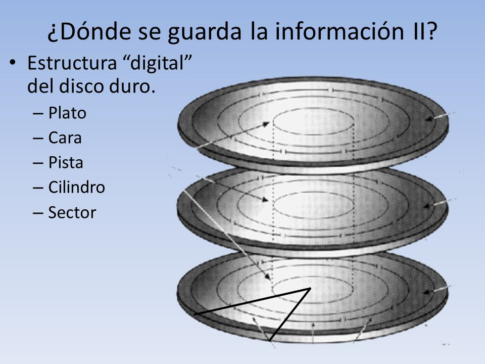 ¿Dónde se guarda la información II? Estructura digital del disco duro. – Plato – Cara – Pista – Cilindro – Sector