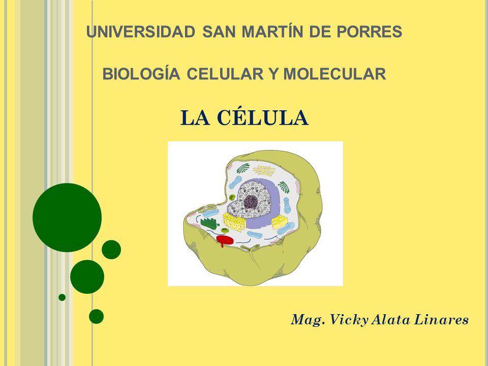 LA CÉLULA Mag. Vicky Alata Linares UNIVERSIDAD SAN MARTÍN DE PORRES BIOLOGÍA CELULAR Y MOLECULAR