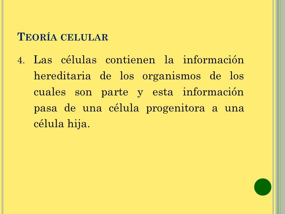 T EORÍA CELULAR 4. Las células contienen la información hereditaria de los organismos de los cuales son parte y esta información pasa de una célula pr
