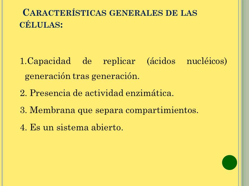 C ARACTERÍSTICAS GENERALES DE LAS CÉLULAS : 1.Capacidad de replicar (ácidos nucléicos) generación tras generación. 2. Presencia de actividad enzimátic