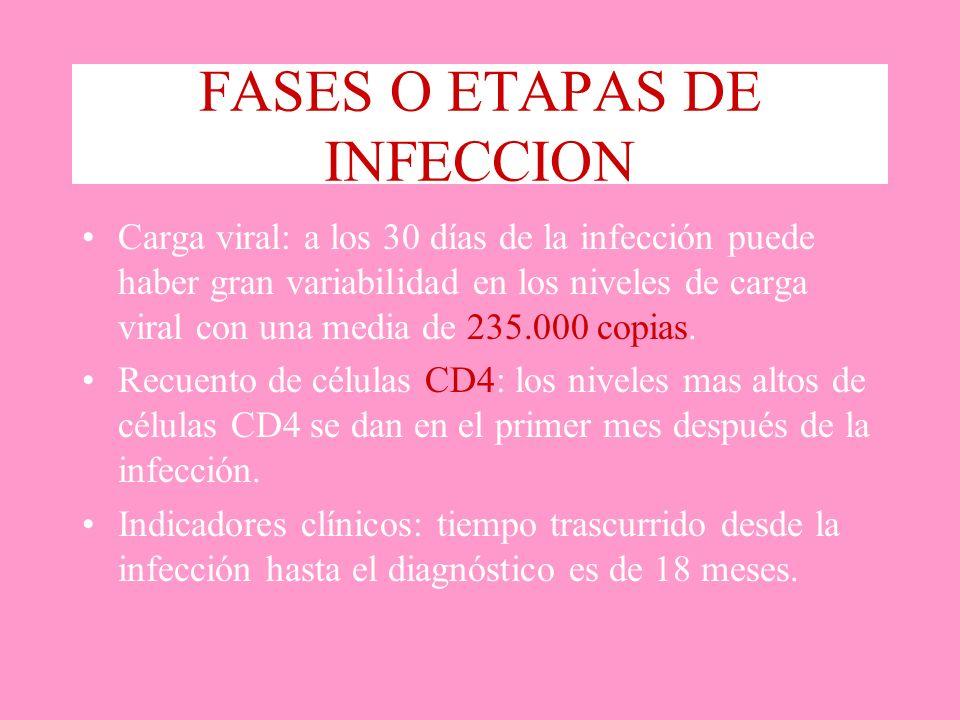 FASES O ETAPAS DE INFECCION Carga viral: a los 30 días de la infección puede haber gran variabilidad en los niveles de carga viral con una media de 23
