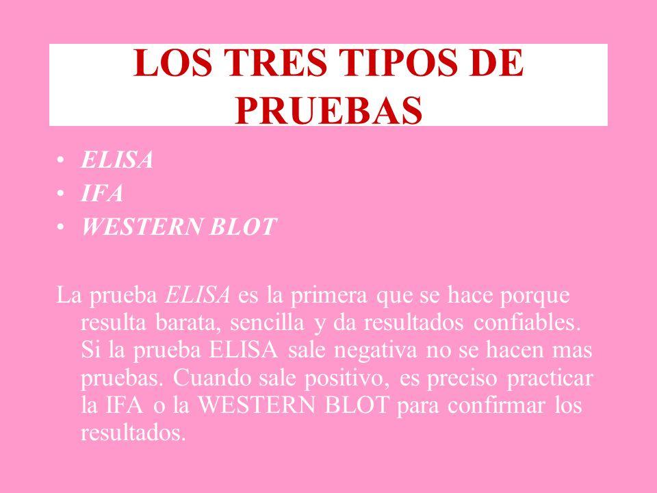 LOS TRES TIPOS DE PRUEBAS ELISA IFA WESTERN BLOT La prueba ELISA es la primera que se hace porque resulta barata, sencilla y da resultados confiables.