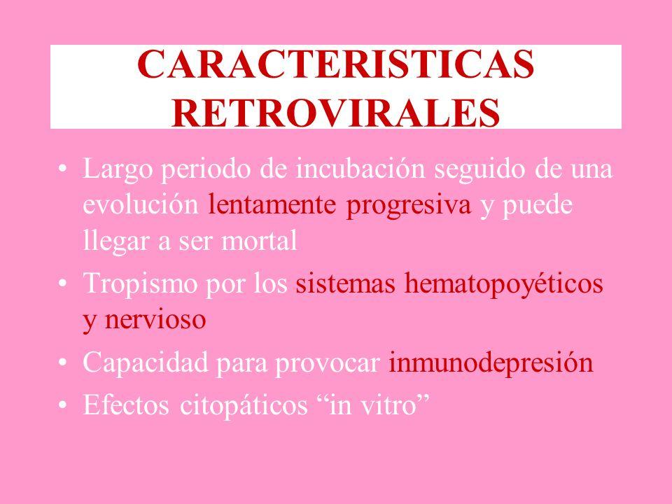 CARACTERISTICAS RETROVIRALES Largo periodo de incubación seguido de una evolución lentamente progresiva y puede llegar a ser mortal Tropismo por los sistemas hematopoyéticos y nervioso Capacidad para provocar inmunodepresión Efectos citopáticos in vitro