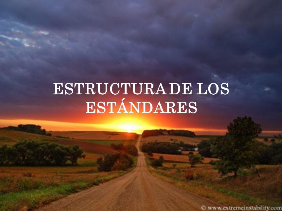 ESTRUCTURA DE LOS ESTÁNDARES