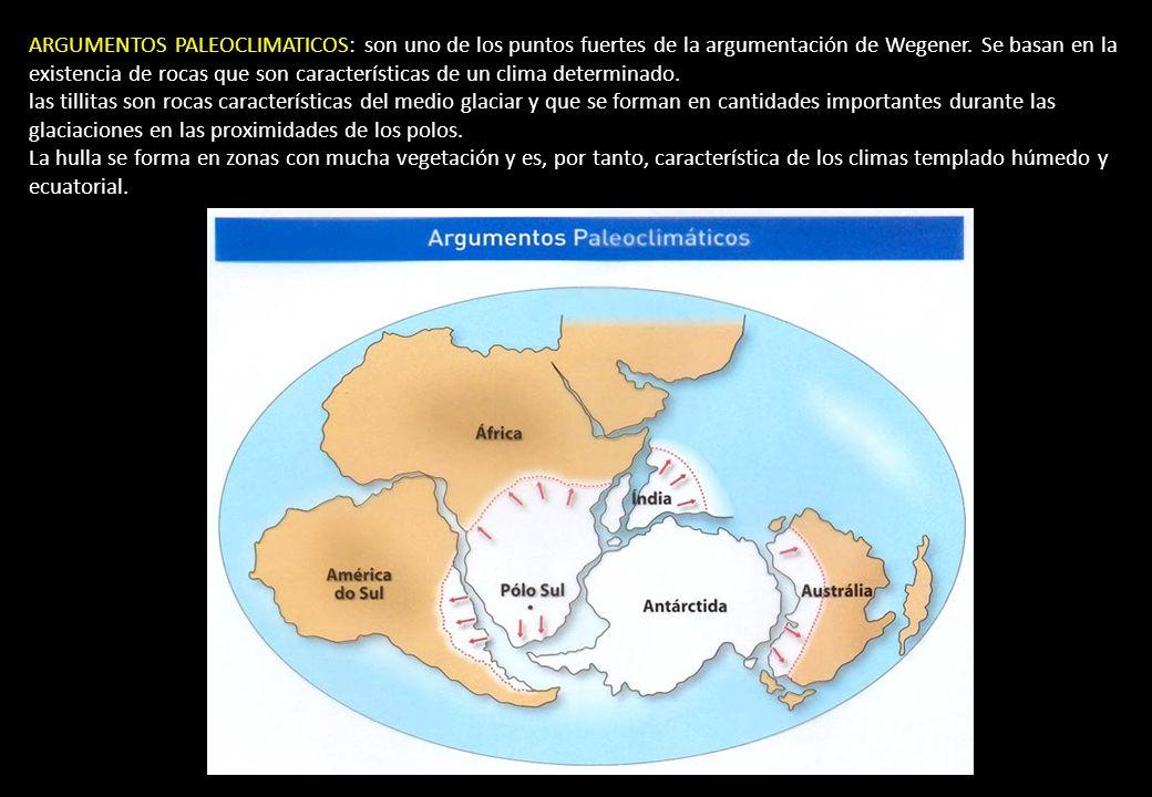 ARGUMENTOS PALEOCLIMATICOS: son uno de los puntos fuertes de la argumentación de Wegener. Se basan en la existencia de rocas que son características d