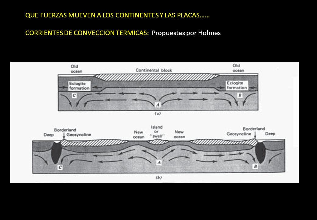 QUE FUERZAS MUEVEN A LOS CONTINENTES Y LAS PLACAS…… CORRIENTES DE CONVECCION TERMICAS: Propuestas por Holmes