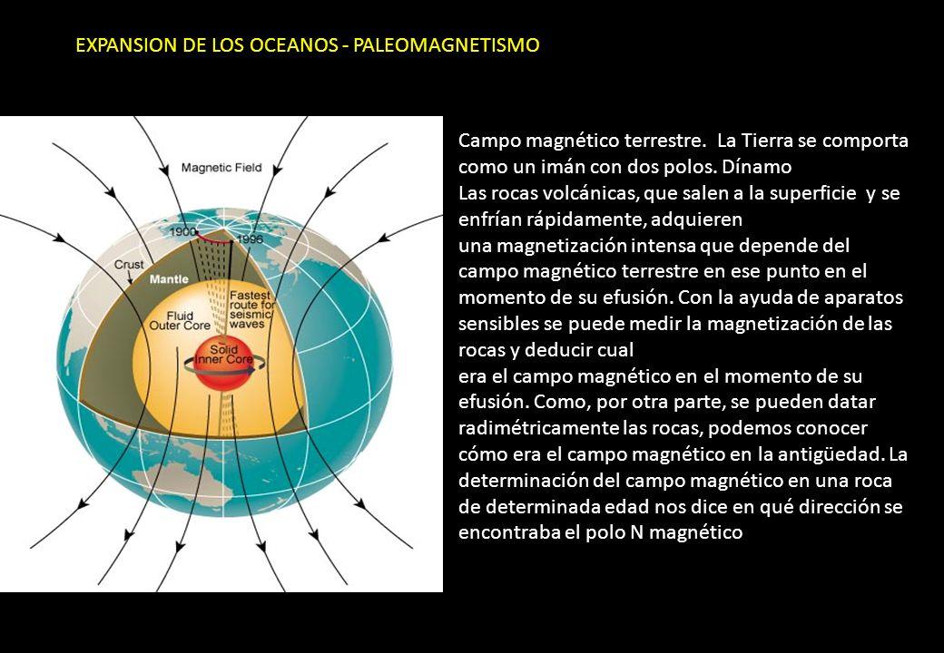 EXPANSION DE LOS OCEANOS - PALEOMAGNETISMO Campo magnético terrestre. La Tierra se comporta como un imán con dos polos. Dínamo Las rocas volcánicas, q