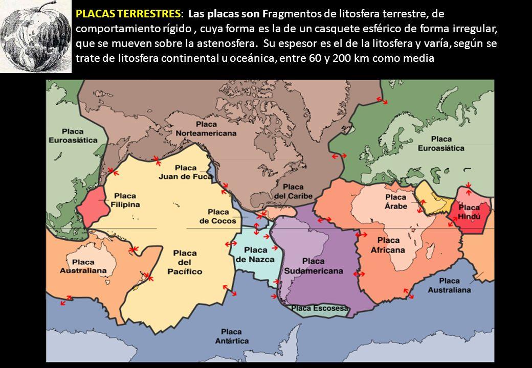 PLACAS TERRESTRES: Las placas son Fragmentos de litosfera terrestre, de comportamiento rígido, cuya forma es la de un casquete esférico de forma irreg