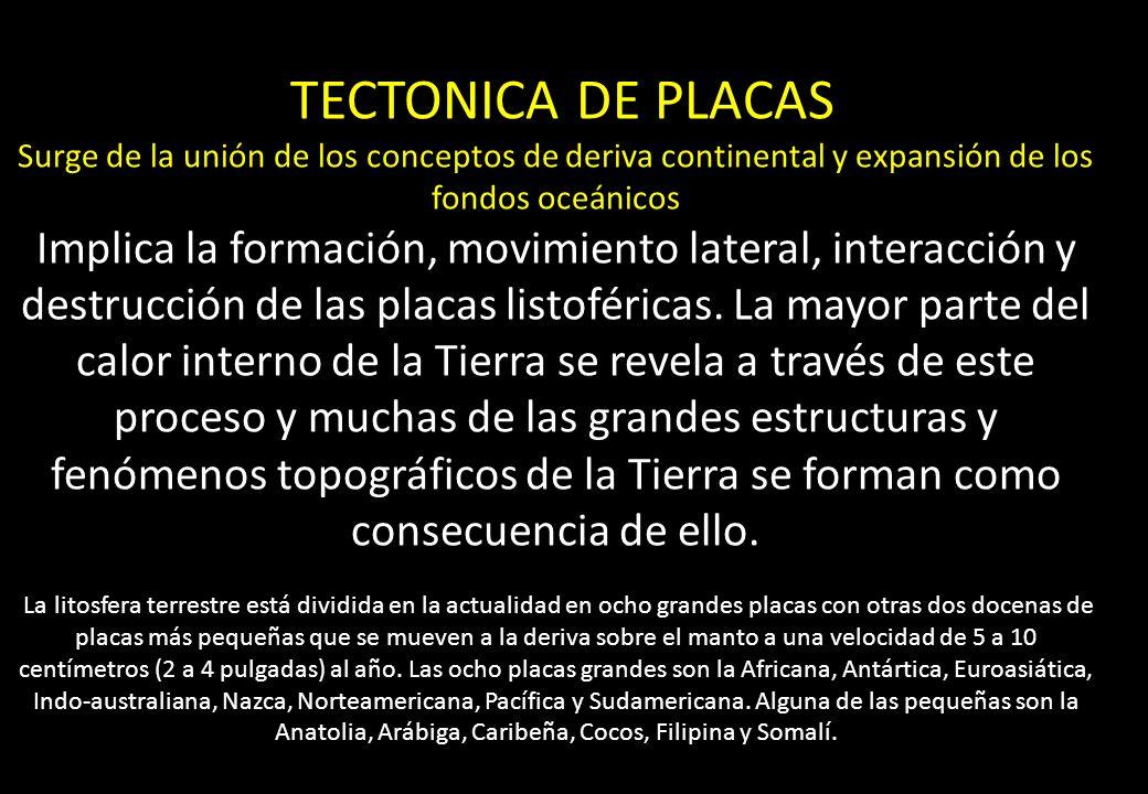 TECTONICA DE PLACAS Surge de la unión de los conceptos de deriva continental y expansión de los fondos oceánicos Implica la formación, movimiento late