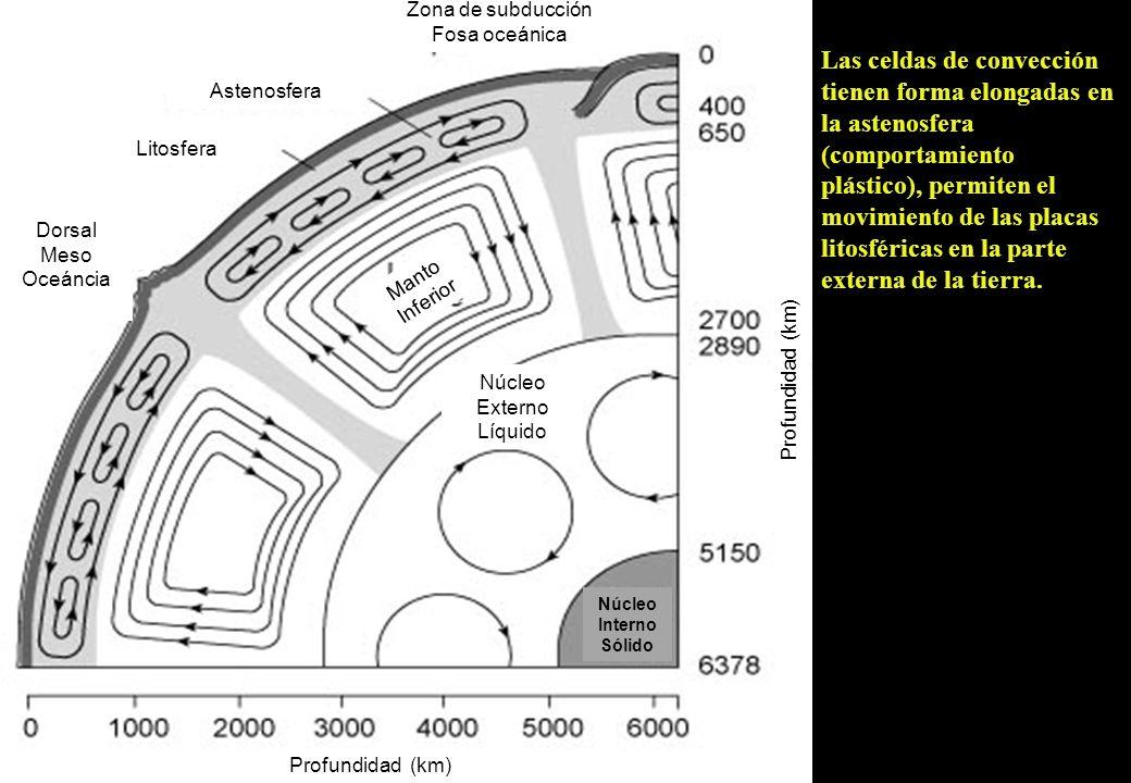 Zona de subducción Fosa oceánica Astenosfera Litosfera Dorsal Meso Oceáncia Profundidad (km) Manto Inferior Núcleo Externo Líquido Núcleo Interno Sóli
