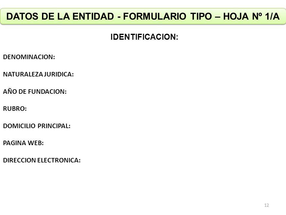 DATOS DE LA ENTIDAD - FORMULARIO TIPO – HOJA Nº 1/A IDENTIFICACION: DENOMINACION: NATURALEZA JURIDICA: AÑO DE FUNDACION: RUBRO: DOMICILIO PRINCIPAL: P